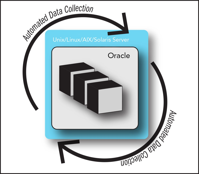 OracleGraphic